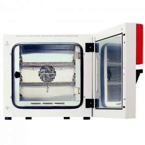 Термостат Binder BF 53 (53 л, нагрев до 100 °C, вентилятор)